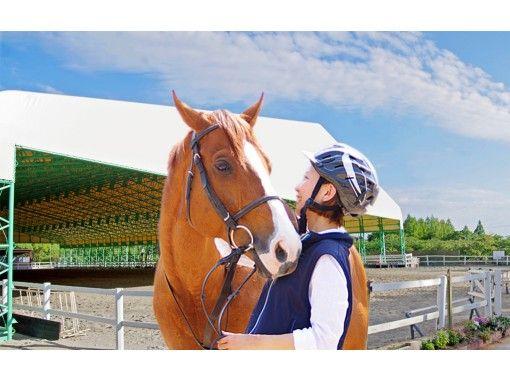 【兵庫/明石・東播磨】初めての方はコレ!体験乗馬1回コース