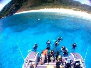 的圖像[沖繩慶良間群島(座間味島,渡嘉敷-AKA)]潛航遊(1天的課程)