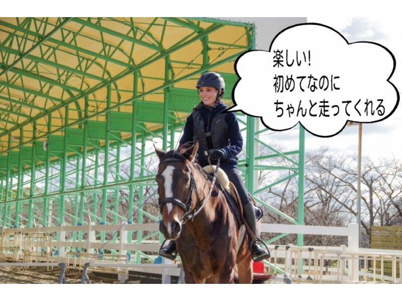 【兵庫/明石・東播磨】乗馬を満喫!プレミアム体験乗馬コースの紹介画像