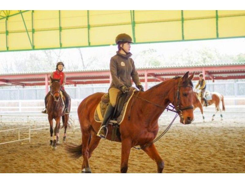 【兵庫/明石・東播磨】細かい練習がしたい!乗馬体験(ミニ経験者コース)の紹介画像