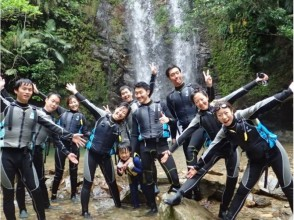 【沖縄・国頭で自然体験】独力で踏破する!やんばるリバートレッキング(沢登り)の画像