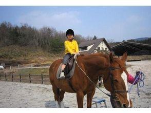 【広島県/広島・呉】初めての方も楽しめる!ひき馬体験