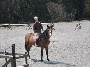 【広島県/広島・呉】初めての方でも大丈夫!体験乗馬の画像