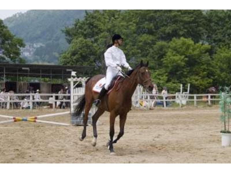 【広島県/広島・呉】乗馬経験者対象!ビジターコースの紹介画像