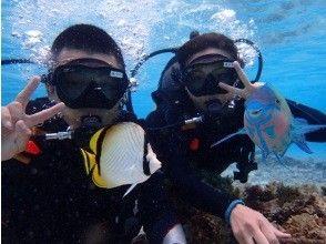 [Okinawa ・ Minnajima Island] Day return swimming and boat snorkeling Diving or Parasailing(Plan A)