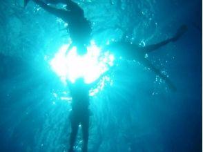 【沖縄・本部】初心者安心!体験ダイビング(ボートエントリー)の画像