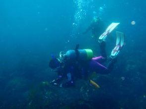 [Ibaraki Tsukuba] Advanced Open Water Diver course [C card step up]