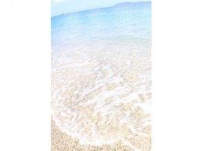 【鹿児島・奄美大島】1日シュノーケルで海遊び!サンゴもウミガメも見に行こう!(お弁当サービス付)の画像