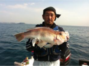 【神奈川・横浜】ボートフィッシング~海の生き物を釣ろう!「チャーターボートラポール2コース」6名様迄