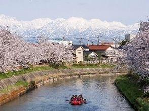 [E-boat Sakura tour] Toyama weasel river-spring of Yusakura Cruise (long course)