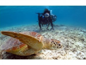 【Kagoshima · Amami Oshima】 A nice underwater photograph present! Image of experiential diving (half day course: 2.5 hours)