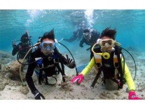 【鹿児島・奄美大島】シュノーケルとダイビングを同時に堪能!体験ダイビング贅沢三味コース(7時間)