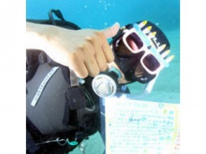 【鹿児島・奄美大島】ダイナミックな太平洋でのダイビング!(ライセンス持ち限定・ビーチダイビング)