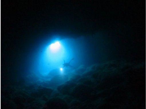 【鹿児島・奄美大島】日没、夜の海に潜って普段と違う海を体験しよう!ナイト・サンセットダイビング