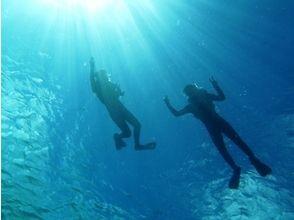 去看看[沖繩石垣島]曼塔!曼塔爭奪潛水課程