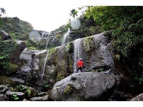 [Okinawa Iriomote Island] Yutsun three-stage waterfall! Iriomote Island trekking tour (6 hours)