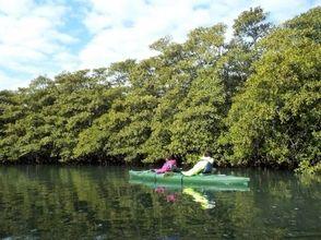 [Okinawa Iriomote Island] waterfall of phantom waterfall Nara! ! Iriomote Island sea kayak tour (7 hours)