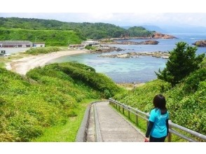 [Shizuoka, Shimoda] Let's relax and explore nature-rich scenery with a guide! Shimoda trekking (half-day course)