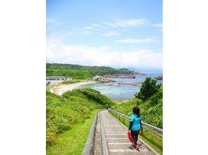 【静岡・下田】自然豊かな景色をゆったり冒険しよう!下田トレッキング(半日コース)の画像