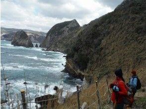 【静岡・3時間】まったりと海を眺めながらトレッキングしよう!南伊豆コース(スタンダードコース)の画像