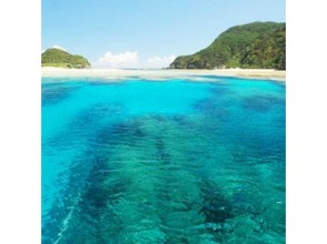 [Okinawa Chubu and Chatan departure] everyone is paradise Kerama Islands you want to visit at least once! Diving Tour