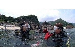 【鹿児島県・屋久島】ライセンスお持ちの方!ビーチでたっぷり満喫【ファンダイビング・2ビーチダイブ】の画像