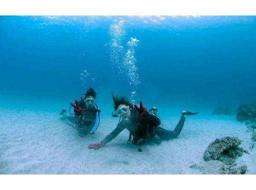 【屋久島 体験ダイビング】ベーシックな1ダイブ・コース!初めての方におススメ!綺麗な海をのんびり散策!ウミガメに会えるかも?
