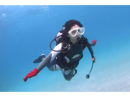 [Yakushima Experience Diving 】 2 dive course carefully! Even the first person is OK! If you want to dive more and more!の紹介画像