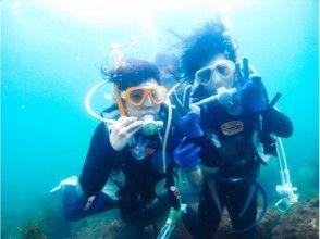 【兵庫】海の中の世界を知ろう!体験ダイビング〜日本海~温泉券付き!