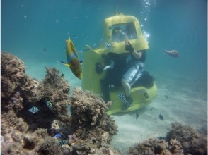 [沖繩縣名護]驅動器的海底世界在跳水摩托車! ? [跳水摩托車]的形象