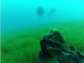 [北海道支笏]粉絲潛水[2潛水3小時]水質一號的淡水湖