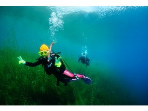 Hokkaido Lake Shikotsu Diving ・ Departs from 1 person. 2DIVE in the morning (2DIVE in the afternoon is also possible)