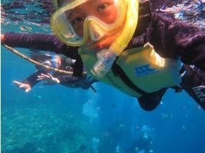 【沖縄・中頭郡】気軽に海を楽しもう!シュノーケリング【青の洞窟ツアー・珊瑚ツアー】の画像