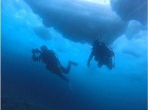 【北海道・知床】2021年流氷ダイビングツアー【2021年3月6日(土)開催】