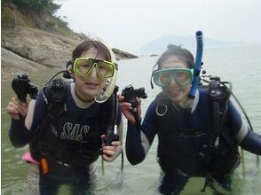 【愛媛・新居浜】温暖な瀬戸内海でダイビング(体験ダイビングコース)の画像