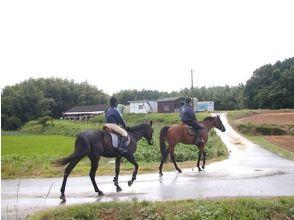 【福岡・福津市】未経験でも安心♪健康らくらく乗馬教室の画像