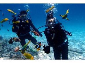 Image of [Okinawa Minna] beach diving plan