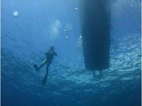 【中国・島根町】気持ちはハワイアン!まったりダイビングツアー【日帰り・ボート/ビーチ】の画像