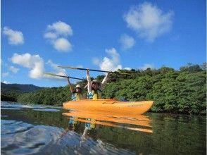 [Waterfall of Okinawa Iriomote-Pinaisara] popularity No.1 course! The view is superb. Canoe & trekking tour