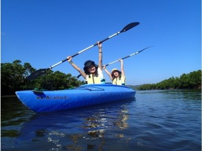 【沖縄 西表島・サンガラの滝】滝つぼや滝の裏側でも遊べます!半日カヌー&トレッキングツアー