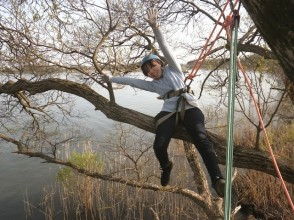 【滋賀高島】基本のツリーカフェ!枝に座って立って寝転んでとことん木登り!(2時間)の画像