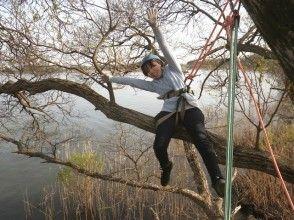 【滋賀・高島】琵琶湖の水源の森で木と遊ぶ!インストラクターが案内する貸切の木登りツアー[VBC]