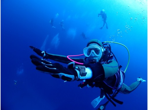 Shonan DIVE.com (SHONAN SCUBA DIVING)
