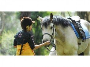 【茨城・水戸】馬にまたがってみよう!体験乗馬(1回コース)【乗馬】の画像