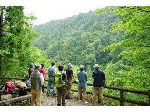 【鳥取・八頭郡智頭町】芦津の森林で心も体もリフレッシュしよう!森林セラピー体験(3時間・半日コース)