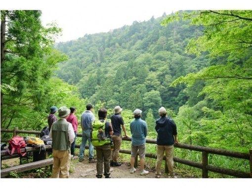 【鳥取・八頭郡智頭町】芦津の森林で心も体もリフレッシュしよう!森林セラピー体験(3時間・半日コース)の紹介画像