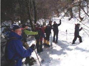 【鳥取・八頭郡】冬の白銀の癒しの世界へご案内!スノーシュー体験!(1日コース)の画像