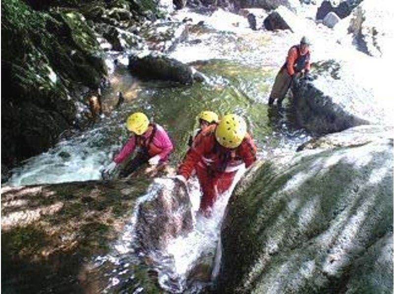 【鳥取・八頭郡】暑い夏の日に水遊びを楽しんで涼もう!シャワークライミング体験(3時間)の画像