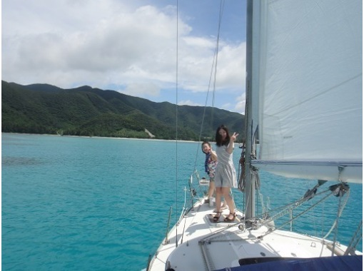 奄美潛水學校禿海洋(海洋HAGE)