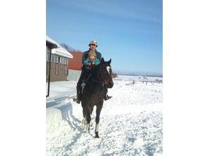 【北海道・4回】乗馬を本格的に始めたい!そんなあなたへのオススメプラン!の画像